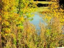 Schöne und subtile warme Töne des Herbstes stockfoto