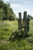 Schöne vibrierende englische Landschaftslandschaft mit flachem dep Lizenzfreies Stockbild