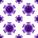 Schöne violette Blume Nahtloses Blumenmuster Vektor Lizenzfreies Stockfoto