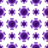 Schöne violette Blume Nahtloses Blumenmuster Vektor Stockfotografie