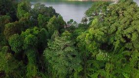 Schöne Vogelperspektive von königlichem Belum Malaysia stock video