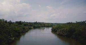 Schöne Vogelperspektivelandschaft von breitem Fluss fließend in den Dschungel mit tropischen grünen Büschen Wildnis landcape stock video footage