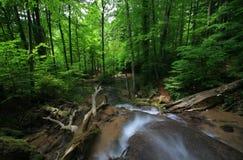 Schöne Wasserfälle im Frühjahr Stockfotografie