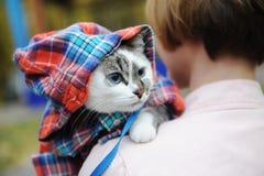 Schöne weiße blauäugige Katze in einem karierten Hemd in einer Haube auf der Schulter des Mädcheninhabers Schließen Sie herauf Po lizenzfreie stockfotografie
