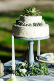 Schöne weiße Hochzeitstorte mit den Blumen im Freien Lizenzfreie Stockfotos