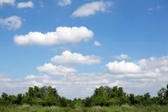 Schöne weiße Wolken mit blauem Himmel und grünen Büschen Stockfotos