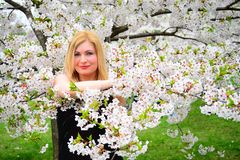 Schöne weibliche Aufstellung im Kirschblüte-Garten Lizenzfreie Stockfotos