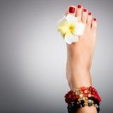 Schöne weibliche Füße mit roter Pediküre Lizenzfreie Stockfotos