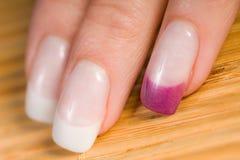 Schöne weibliche Fingernägel Lizenzfreie Stockfotos