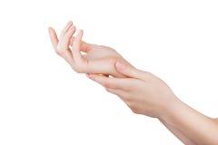 Schöne weibliche Hände lizenzfreie stockfotografie