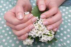 Schöne weibliche Hände, die Blumenstrauß von Blumen in den Händen halten Lizenzfreies Stockfoto