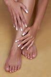 Schöne weibliche Hände und Fahrwerkbein lizenzfreie stockfotografie