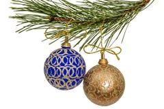 Schöne Weihnachtsbälle, die an der Niederlassung der Kiefer, Isolat hängen Stockfotografie