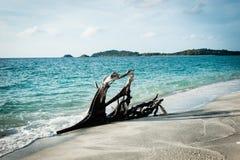 Schöne Wellen im Meer Stockfotografie
