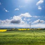 Schöne Wiese und blauer Himmel Lizenzfreie Stockbilder