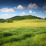Schöne Wiese und blauer Himmel Lizenzfreies Stockbild