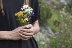 Schöne Wildflowers in den Händen Stockbild