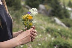 Schöne Wildflowers in den Händen Stockfotografie