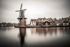 Schöne Windmühlenansicht vom Haarlem-Stadtzentrum an einem bewölkten Tag Lizenzfreie Stockbilder