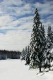 Schöne Winter-Szene durch einen gefrorenen See Lizenzfreie Stockfotos