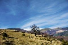 Schöne Winterberglandschaft von Bulgarien Lizenzfreies Stockfoto