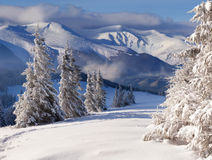 Schöne Winterlandschaft stockbilder