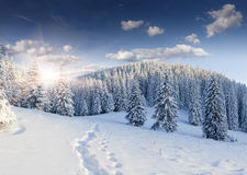 Schöne Winterlandschaft Lizenzfreies Stockbild