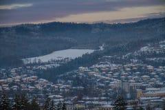 Schöne Winterlandschaft im Wald Lizenzfreies Stockfoto