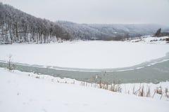 Schöne Winterlandschaft im Wald Lizenzfreie Stockfotos