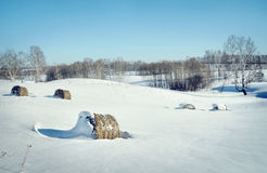 Schöne Winterlandschaft mit Rollen des Heus auf dem weißen Schnee Stockbilder