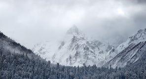 Schöne Winterlandschaft mit Schnee bedeckte Bäume, Winterberg Stockfotos