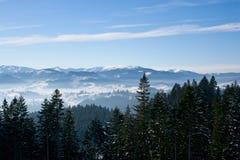 Schöne Winterlandschaft mit Schnee deckte Bäume ab Lizenzfreie Stockfotografie