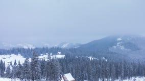Schöne Winterlandschaft mit Schnee deckte Bäume ab Kaukasus-Berge, Georgia Gudauri stock footage