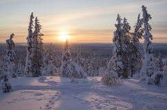Schöne Winterlandschaft von Nord-Finnland lizenzfreie stockfotografie