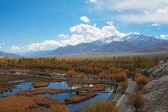 Schöne Wintersaison in Leh Ladakh, Indien stockfotografie