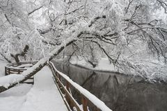 Schöne Winterszene auf Yauza-Fluss Lizenzfreie Stockbilder