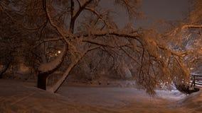 Schöne Winterszene im Park Lizenzfreies Stockbild