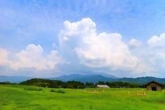 Schöne Wolkenbildung mit Grün Lizenzfreies Stockfoto