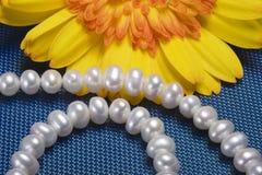 Schöne wulstige Halskette mit heller gelber Blume lizenzfreies stockfoto