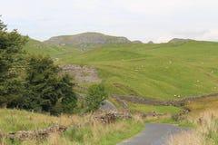 Schöne Yorkshire-Tal-Ansicht Stockfotografie