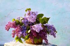 Schöne Zusammensetzung von Blumen im Korb Lizenzfreies Stockbild