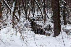 Schöner überschwemmter Wald in der Winterzeit Lizenzfreie Stockbilder