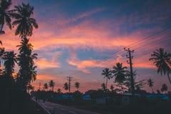 Schöner Abend mit buntem Himmel Stockfotos