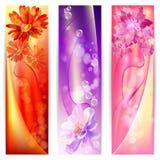 Schöner abstrakter Hintergrund mit Blumenfahne Stockfotos