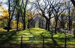 Schöner allgemeiner Garten Lizenzfreie Stockfotos