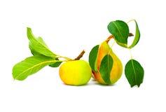 Schöner Apfel und Birne Lizenzfreies Stockfoto