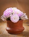 Schöner Asterblumenblumenstrauß Lizenzfreies Stockfoto