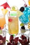 Schöner Aufbau der Cocktails Lizenzfreie Stockfotos