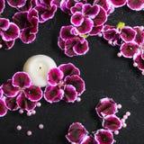 Schöner Badekurorthintergrund der Pelargonienblume, -perlen und -kerze herein Lizenzfreies Stockbild