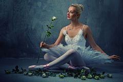 Schöner Balletttänzer mit weiße Rosen. Lizenzfreie Stockfotos